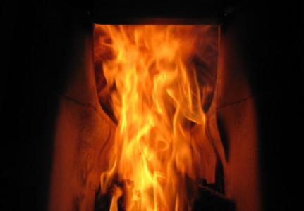 見ほれる炎です