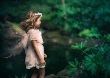 fairy-min